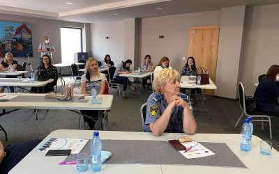 Peer review experience in Foča and Bihać: Local Advocacy Action plans developed